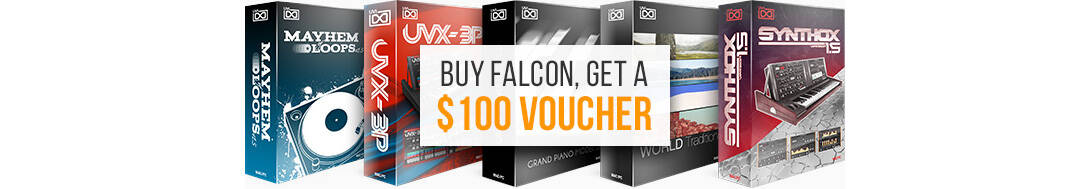 FALCON_www-pp-in-depth_factory-content_voucher